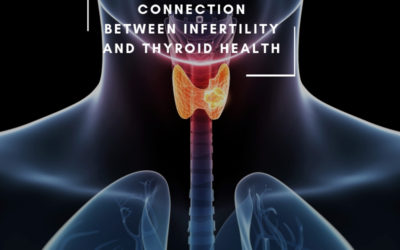 Connection Between Infertility and Thyroid Health